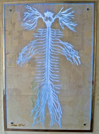 Leo Jahaan - Indirect Realism (Gallery)