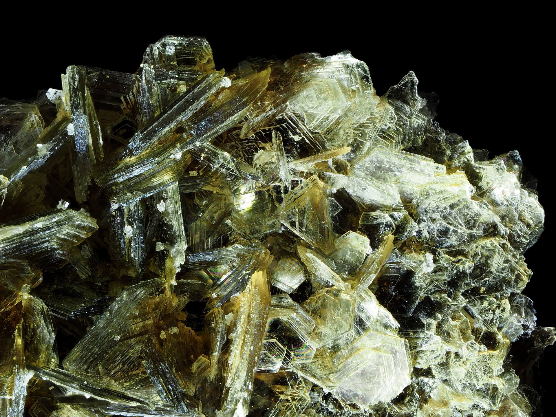 Another macro shot, showing a jumble of intersecting Muscovite blades.