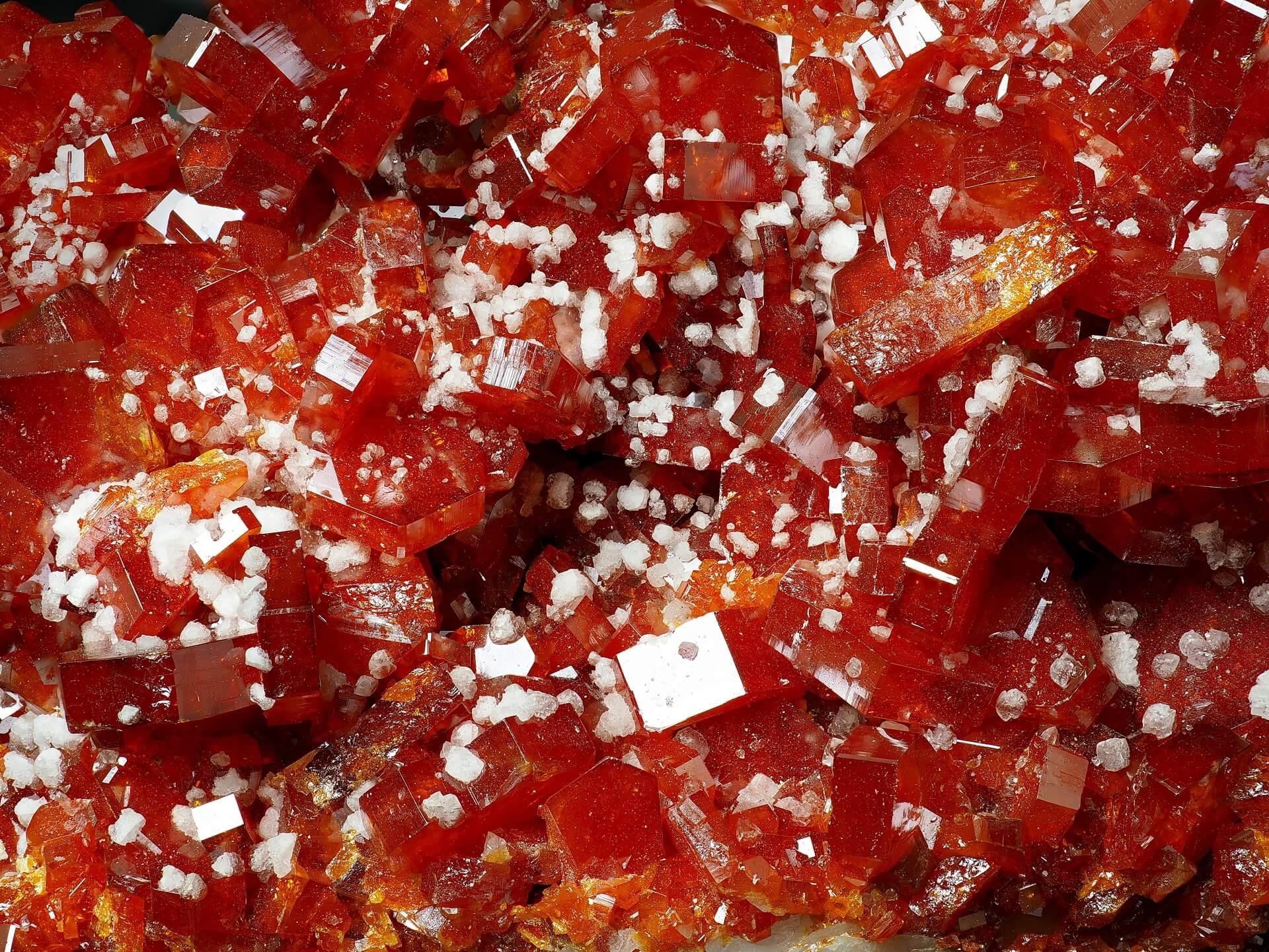 Rich red Vanadinite crystals are sprinkled with small pure-white Baryte in almost cube-like forms.