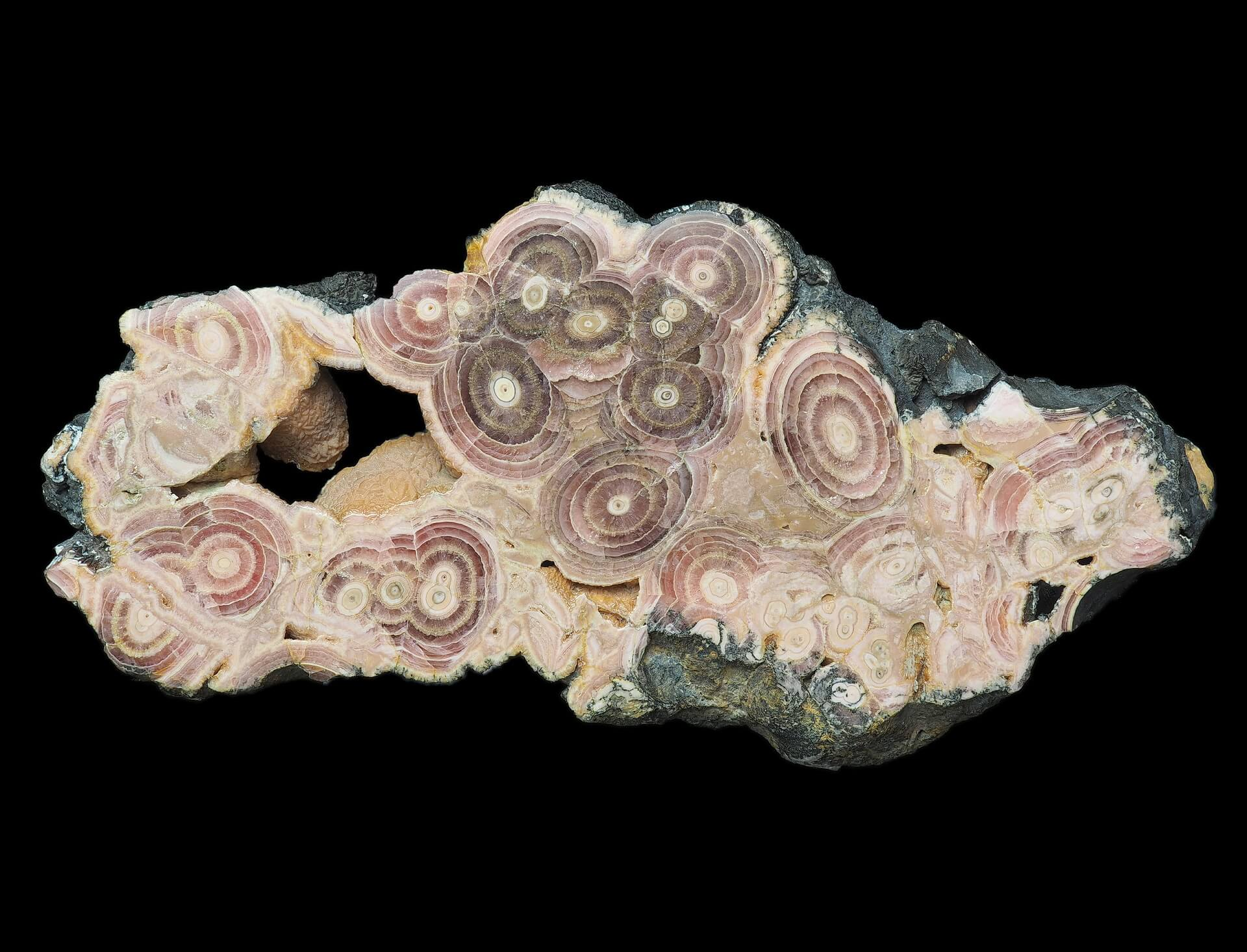 Large slice of Rhodochrosite stalactites.